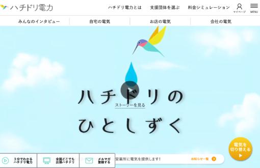 ハチドリ電力 Webサイトシステム開発